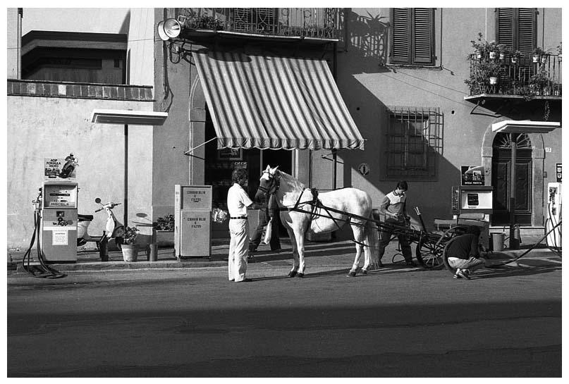 1989 Le cheval fait le plein